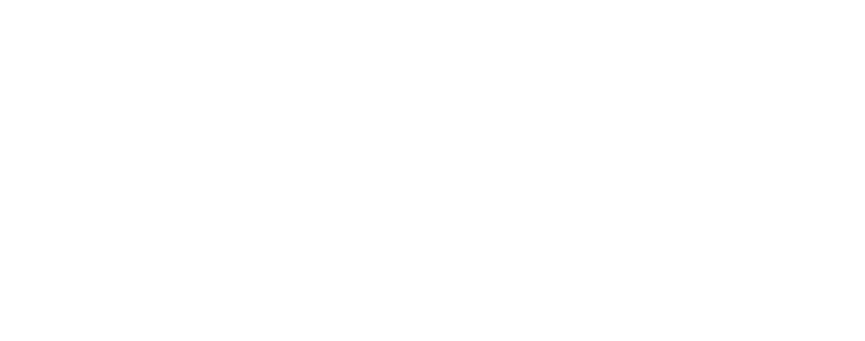 see-feel-renew
